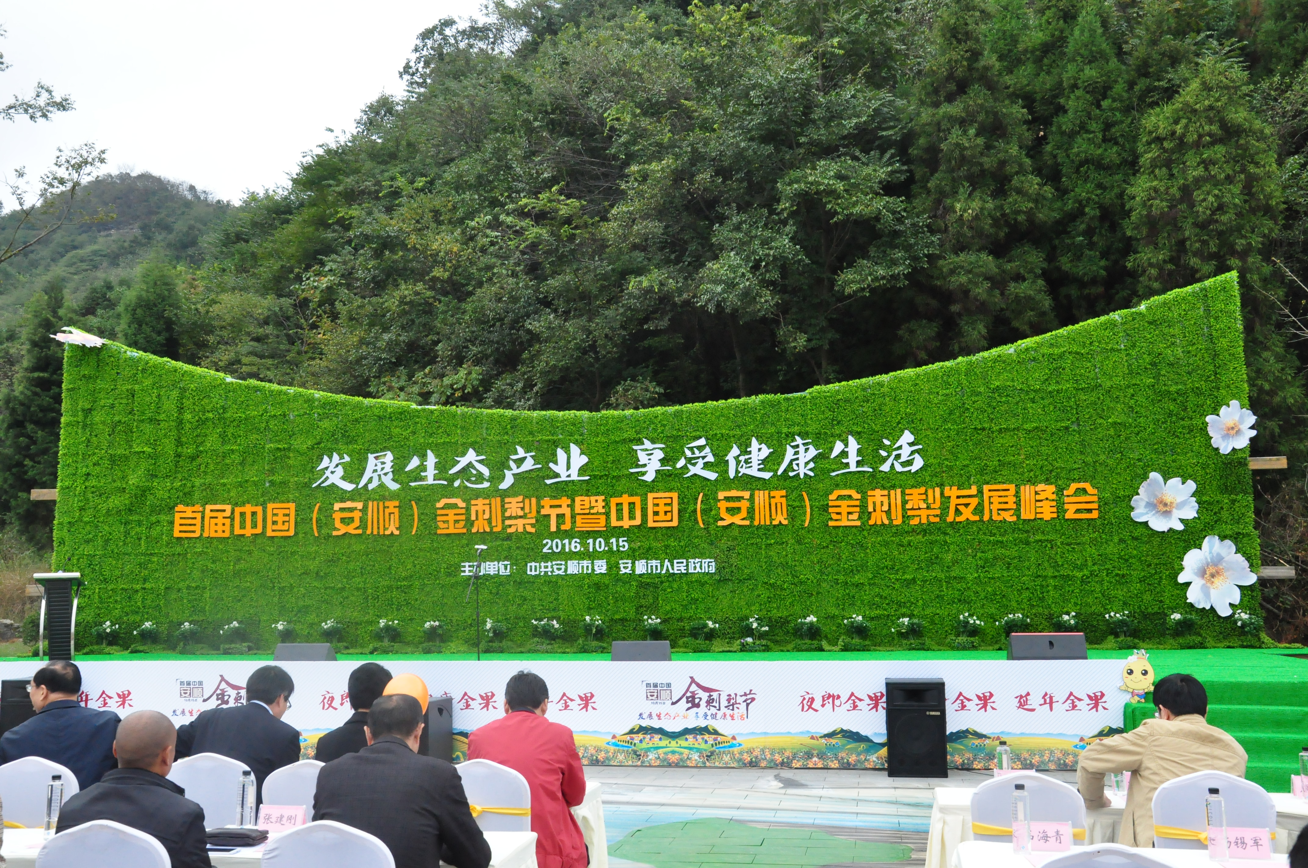 安顺发展绿色产业链,打造金刺梨养生品牌