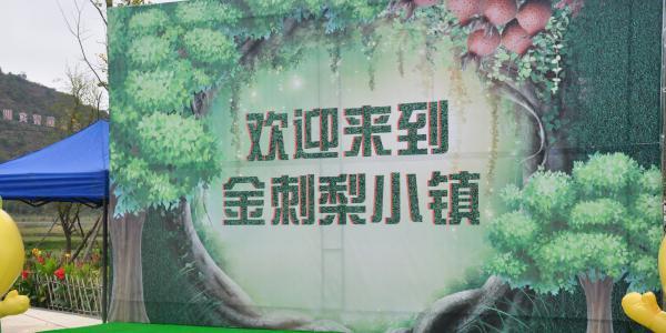 首届中国(安顺)金刺梨节暨中国(安顺)金刺梨发展峰会