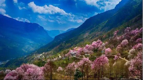 踏春季丨想要的诗和远方,北川为你安排上了!