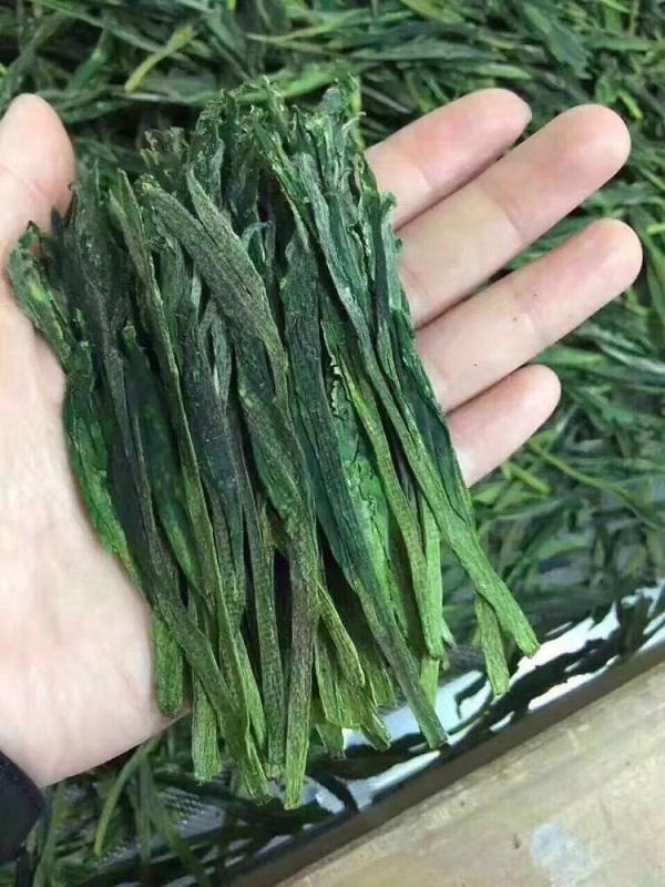 太平猴魁茶农到底有多辛酸?