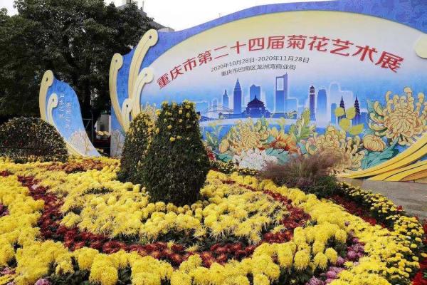 重庆市第24届菊花艺术展闭幕 实现人流量300多万(人次) 整个展区消费达到3.5亿