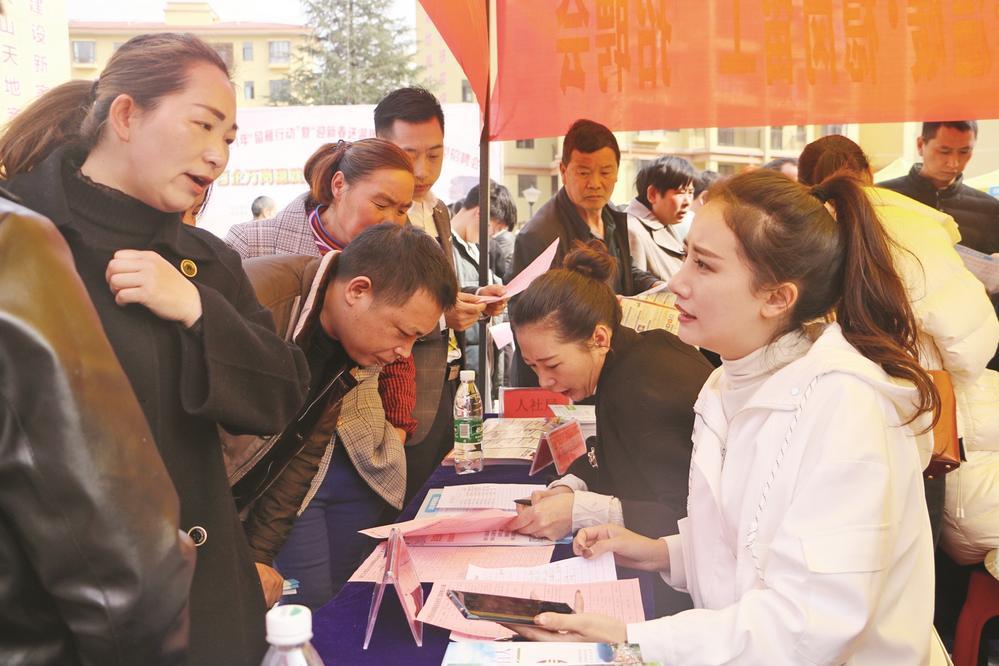 铜仁印江专项招聘会火爆 300多人达成意向