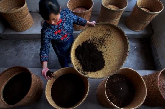 买茶节 2021浮梁茶主题摄影节征稿启事
