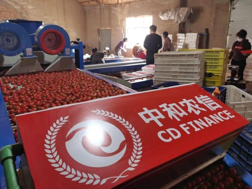 中和农信:订单农业步入正轨,特色产业助力乡村振兴