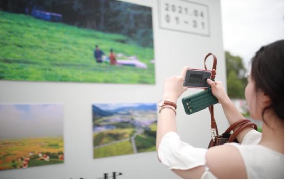 浮梁茶主题摄影节作品正式对外展出