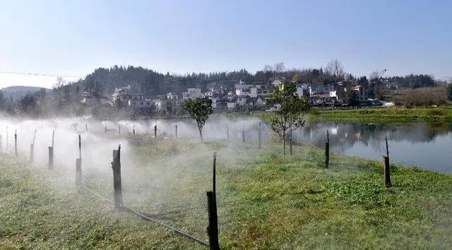 贵州8地获评全国第四批节水型社会建设达标县